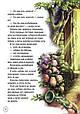 Книга Любимые сказки | Бірічева Н.В., фото 7