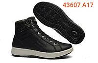 Женские ботинки гриспорт (Grisport) модель 43607 А17