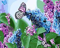 Картина по номерам Brushme Бабочки и сирень