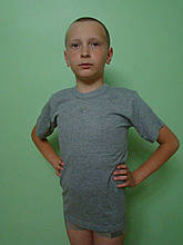 Футболка мальчиковая серая № 42..9-10 лет
