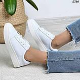 Женские кроссовки натур кожа 5780, фото 5