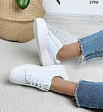 Женские кроссовки натур кожа 5780, фото 6