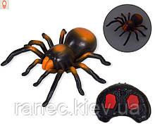 Животное на р/у 9986 паук,пульт,едет по кругу,светится,в коробке 36*25*9см