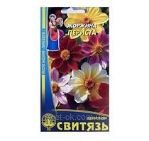 """Семена """"Георгина перистые"""", 0,3 10 шт. / Уп."""