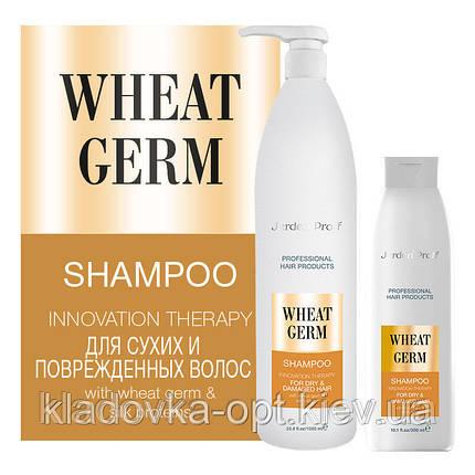 Шампунь для сухих и поврежденных волос JERDEN PROFF FOR DRY & DAMAGED HAIR, 1000 ml, фото 2