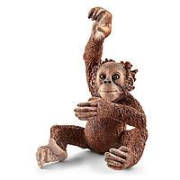 Пластиковая фигурка Schleich Молодой орангутан игрушки для мальчика девочки детские развивающие интерактивные