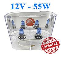 Лампы H-3 12V 55W + 30% Лампы с эффектом ксенона! P14,5S Cool Blue Intense Xenon Vision