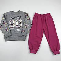 Детский теплый костюм (свитшот и штаны) с начесом для девочку рост 98 (3 года) Серо-розовый