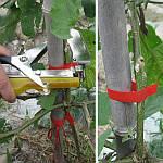 ТАПЕНЕР - лучший садовый инструмент для подвязки растений