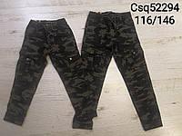 Котоновые брюки для мальчиков Seagull оптом, 116146 рр. Артикул: CSQ52294