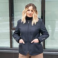 Модные женские куртки большого размера 50-60 темно-синий