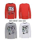 Трикотажний реглан для хлопчиків Glo-Story, 134-164 рр. Артикул: BCX0737