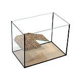 Аквариум для черепахи, черепашатник 50*30*35 см (52 л) с мостиком ГАРАНТИЯ, фото 2