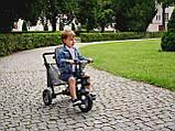 Дитячий велосипед Lionelo TRIS CANDY ROSE/GREY, фото 9