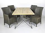 Обеденный комплект Париж  (стол 240х100 см и 6-8 кресел) тик, лум, металл, kt211020202 Стол, фото 2
