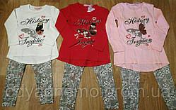 Комплект для дівчаток Sincere, 4-12 років. Артикул: CJ1833