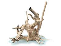 Коряга в аквариум / террариум - натуральная природная декорация (0268)