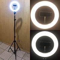 Кольцевая лампа 20 см со штативом на 2м для телефона цветная селфи кольцо кольцевой светодиодное led M-20