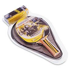 Набор для настольного тенниса DONIC Уровень 500 MT-788480, фото 2