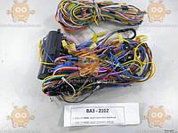 Проводка ВАЗ 2102 полный комплект на кузов (пр-во Россия) ПД 106092