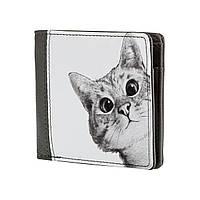 Мужские стильные брендовые кошельки портмоне бумажники из экокожи ZIZ Ей кот