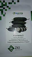 Семена огурца Кассиус F1 / Cassius F1 (Innova Seeds), 1000 семян партенокарпический, ранний