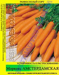 Семена моркови «Амстердамская» 25 кг (мешок)