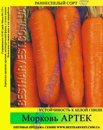 Семена моркови «Артек» 25 кг (мешок), фото 2