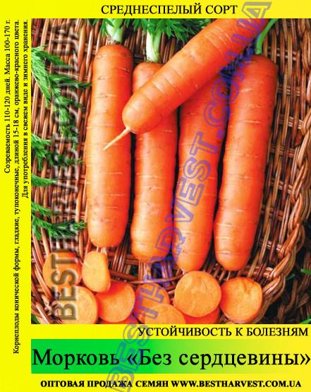 Насіння моркви Без Серцевини 1 кг