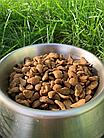 Сухой корм для котят 400 г Пан Кот Классик, классический сухий Класик кошенята, фото 2