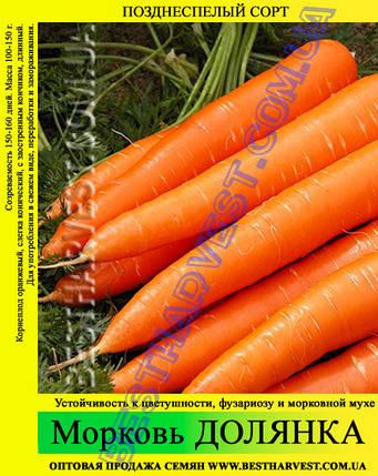 Семена моркови Долянка 1 кг, фото 2
