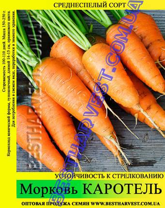 Семена моркови «Каротель» 25 кг (мешок), фото 2