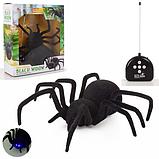 Радиоуправляемый паук Черная вдова Black Widow 779 на пульте управления, фото 9
