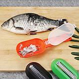 Рыбочистка Fish Scales Wiper Cleaning зеленая   нож скребок для чистки рыбы с контейнером для чешуи, фото 4