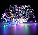 Гирлянда роса 100LED RGB 10м Разноцветный | Гирлянда Конский хвост RD-9024, фото 2
