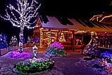 Гирлянда зерно 300LED 21м Микс (RD-7167), Новогодняя бахрама, Светодиодная гирлянда, Уличная гирлянда, фото 6