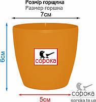 Вазон для цветов Алеана Матильда 7*6см оранжевый 0,3л (Горшок для цветов пластиковый Алеана Матильда), фото 2