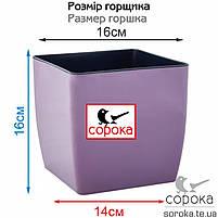Горшок для цветов Алеана Квадро 16*16см фиолетовый 3л (Горшок для растений пластиковый Алеана Квадро 3л), фото 2