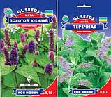 Семена  Душица обыкновенная (материнка) 0.1 г  ,, фото 5