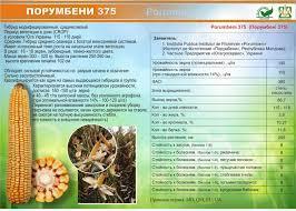 КУКУРУЗА ПОРУМБЕНИ 375 МРФ (ФАО 310), 21,2кг, 2019 г.у. Югагросервис