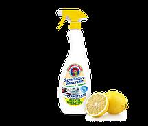 Універсальний очищувач і засіб для виведення плям Sgrassatore universale Limone 625 ml.