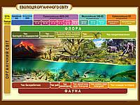 """Стенды для школы по биологии """"Эволюция органического мира"""""""