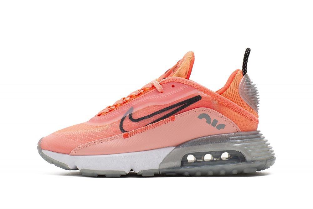 Женские кроссовки Nike Wmns Air Max 2090 CT7698-600
