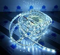 Стрічка світлодіодна 12V smd5050 ІР65 6500К 14,4 W біла 60led герметична, фото 1