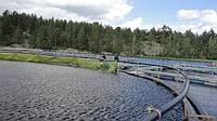 Понтонные садки или понтонные системы для выращивания рыбы