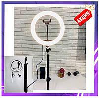 Кольцевая лампа светодиодная LED 30 см штатив 2,1м, набор блогера, фотографа, селфикольцо, кольцевой свет