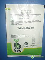 Лук Тамара TAMARA F1 10000с, фото 1