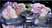 Декоративні Панелі ПВХ GRACE Орхідея на камені