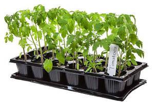 Касети для розсади, торф'яні таблетки та субстрати, грунтосуміші