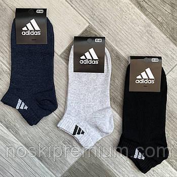 Носки мужские демисезонные хлопок спортивные Adidas, Athletic Sports, короткие, ассорти, 06210